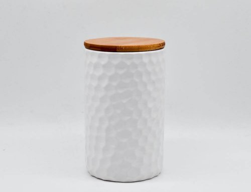 Canister With Air-tight Lid