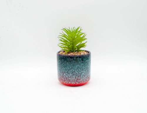 Decorative Faux Potted Succulents/Artificial Plant in Glazed Ceramic Flower Pot